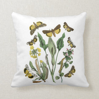Vintage Botanical Moth & Butterfly Nature Cushion