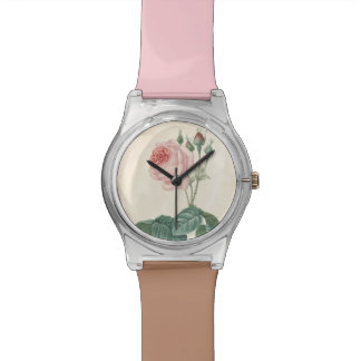 Vintage Botanical Watercolor Rose - May28th Watch