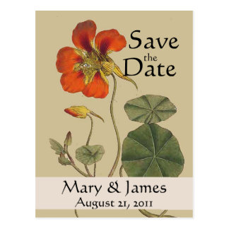 Vintage Botanicals Save the Date Postcard