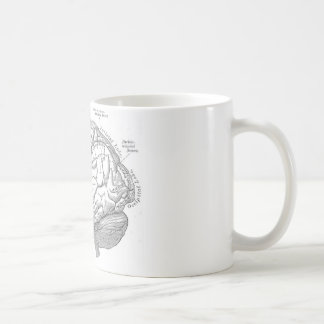 Vintage Brain Anatomy Classic White Coffee Mug