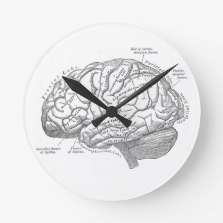 Vintage Brain Anatomy Round Clock