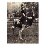 Vintage Broadway Actress Riding an Ostrich