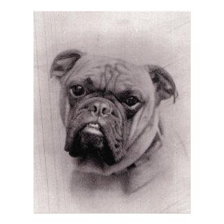 Vintage Bulldog Face Photograph Customized Letterhead