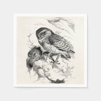Vintage Burrowing Owl Chick Bird Illustration Disposable Napkins