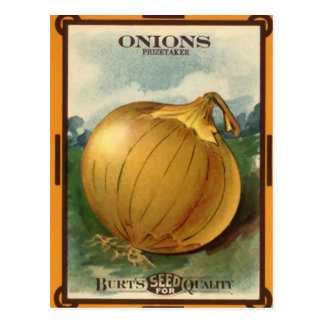 Vintage Burt's Onion Seed Package Postcard