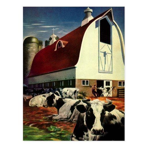 Vintage Business, Dairy Farm w Holstein Milk Cows Postcards