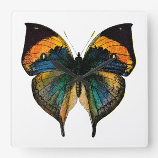 Vintage Butterfly - 1800's Antique Butterfies Square Wall Clock