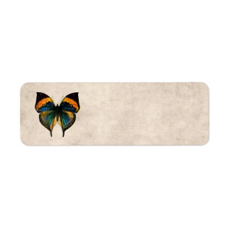 Vintage Butterfly Illustration 1800's Butterflies Return Address Label