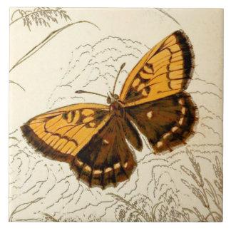 Vintage Butterfly Illustration, Gold and Brown Tile