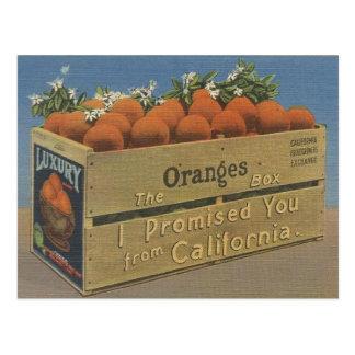 Vintage California Oranges Post Card