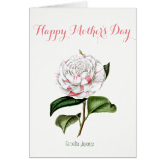 Vintage Camellia Mother's Day Card
