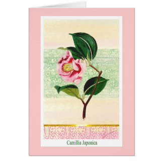 Vintage Camillia  Botanical Greeting Card