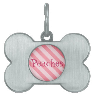 Vintage Candy Stripe Coral Persimmon Grunge Pet Tags
