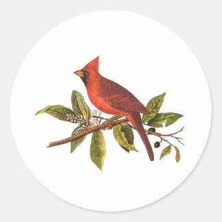Vintage Cardinal Song Bird Illustration - 1800's Round Sticker