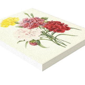 Vintage Carnations Dianthus Garden Flowers Redoute Canvas Print