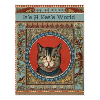 Vintage Cat's Life for Kitty Lovers Post Card