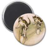 Vintage Cats on Bikes Magnets