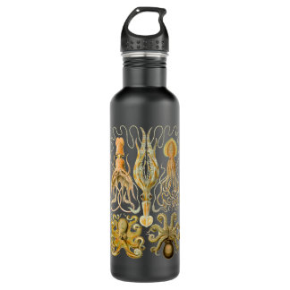 Vintage Cephalopods 710 Ml Water Bottle