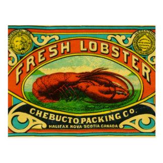 Vintage Chebucto Lobster Postcard