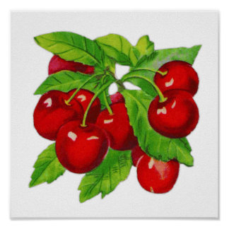 Vintage Cherry Kitchen Wall Decor
