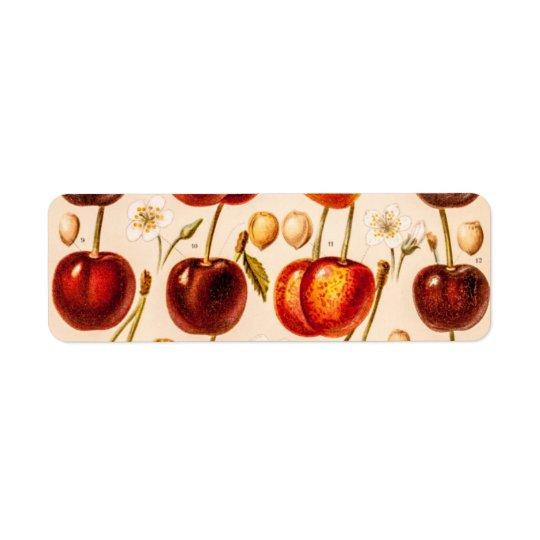 Vintage Cherry Varieties Antique Cherries Fruit