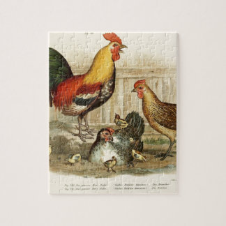 Vintage Chicken family illustration Jigsaw Puzzle