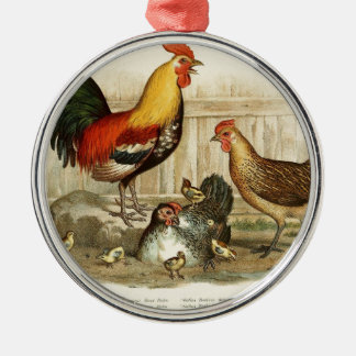 Vintage Chicken family illustration Silver-Colored Round Ornament