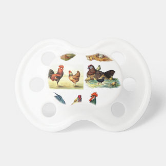 vintage chickens design pacifier