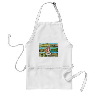 Vintage Christian, Pope Paul VI in the Holy Land Standard Apron