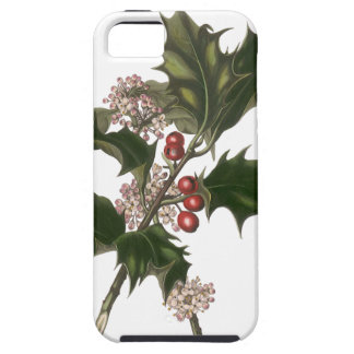Vintage Christmas, Green Holly Plant with Berries iPhone 5 Case
