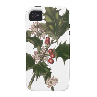 Vintage Christmas, Green Holly Plant with Berries Vibe iPhone 4 Case