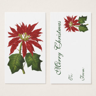 Vintage Christmas, Red Poinsettia Winter Plant Business Card