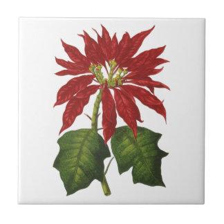 Vintage Christmas, Red Poinsettia Winter Plant Ceramic Tiles