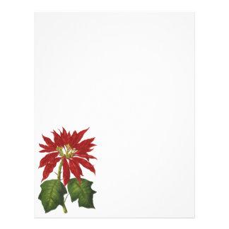 Vintage Christmas, Red Poinsettia Winter Plant Custom Flyer