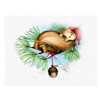 vintage christmas squirrel dreaming postcard