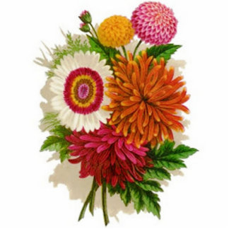 Vintage Chrysanthemums Photo Sculpture Magnet