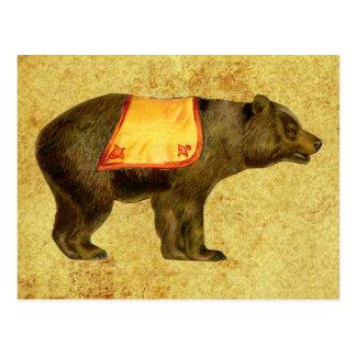 vintage circus bear postcard