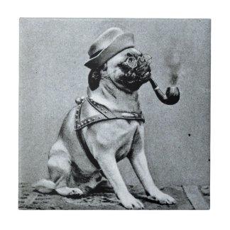 Vintage Classy Pug Photograph Tile