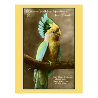 Vintage cockatoo friend birthday photo postcard