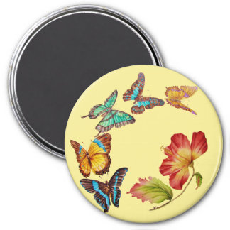Vintage Colorful Butterflies and Hibiscus Magnet