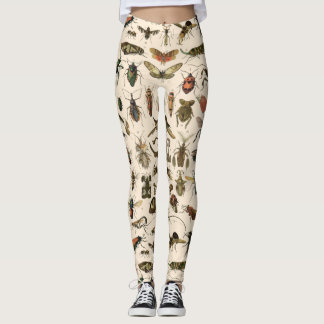 Vintage Colorful Insects Entomology Taxonomy Leggings