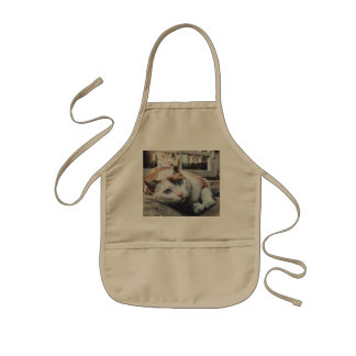 Vintage Colors Cat Kids Apron
