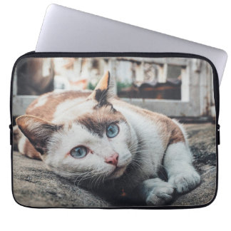 Vintage Colors Cat Laptop Sleeve