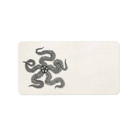 Vintage Common Brittle Star Personalized Template