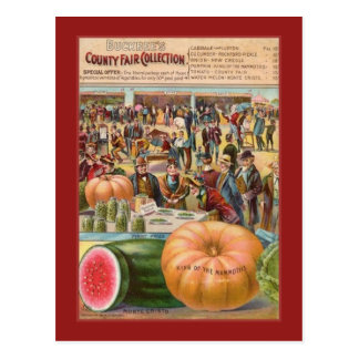 Vintage County Fair Seed Packet Post Card