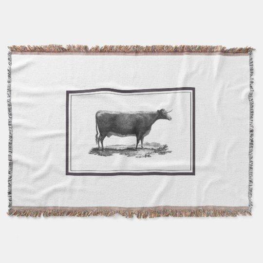 Vintage cow etching blanket throw