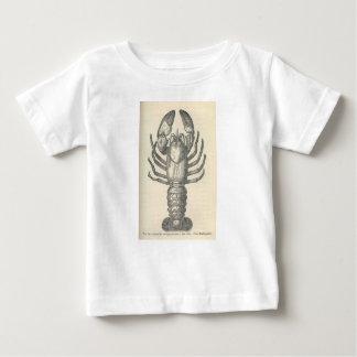 Vintage Crayfish Illustration (1896) Baby T-Shirt