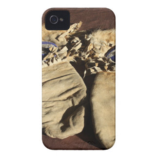 Vintage Cree Mittens Case-Mate iPhone 4 Cases