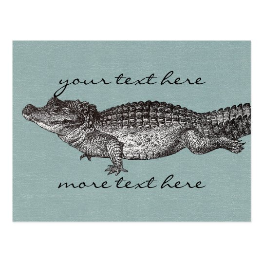 Vintage Crocodile Post Card