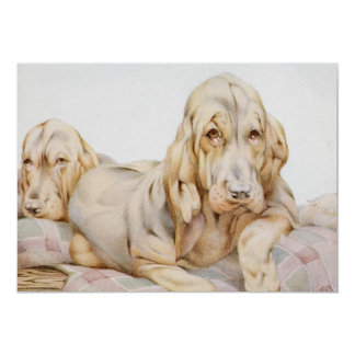 """Vintage Cute Bloodhounds, Puppy Dogs by EJ Detmold 5"""" X 7"""" Invitation Card"""